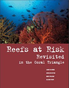 Slideshow: New Report Reveals Threats to Reefs in the Coral Triangle | WRI Insights