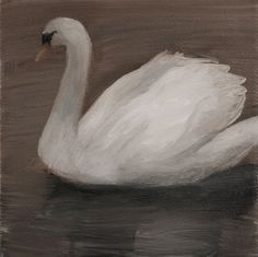 Kristin Vestgård - Swan, oil on canvas