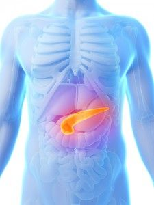 How healthy is your Pancreas? Dr Oz explained where the organ is located, what it does, and how to reduce the risk of inflammation or Pancreatic Cancer.