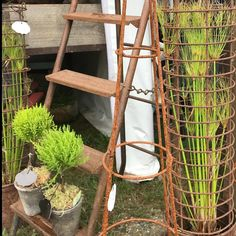 Outdoor Plants, Ladder Decor, Home Decor, Interior Design, Home Interior Design, Patio Plants, Home Decoration, Decoration Home, Interior Decorating