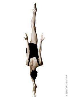Defying gravity by Schatz/Orstein 2007