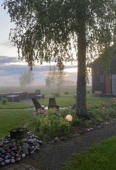 Dreams, Garden, Plants, Garten, Lawn And Garden, Gardens, Plant, Gardening, Outdoor