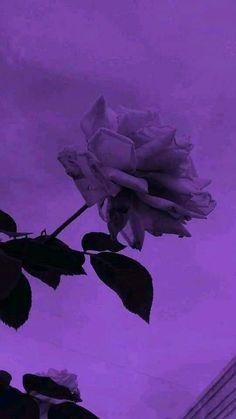 Violet Aesthetic, Dark Purple Aesthetic, Lavender Aesthetic, Sky Aesthetic, Aesthetic Colors, Aesthetic Photo, Aesthetic Pictures, Aesthetic Grunge, Aesthetic Collage