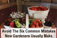 Getting into growing your own fruit and vegetables can be very exciting (even more so if you have young kids!). The problem is – if you jump into gardening without some care and attention, your crops will be doomed to fail, and then you'll likely…