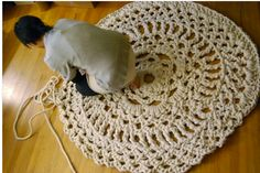 Cotton rope and bare hands (no hooks) made great area doily rug.  From: http://www.etsy.com/listing/43532832/handmade-mega-doily-rug
