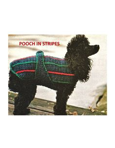 Digital Download Crochet Dog Coat Pattern by harmonycollectibles