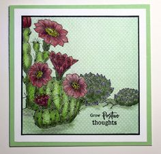 Card created with the Scrumptious Succulents and Blossom and Grow stamp sets from Chocolate Baroque. Beads Direct, Baroque Design, Pink Cards, How To Make Paper, Paper Design, Positive Thoughts, Paper Flowers, Card Making, Greeting Cards