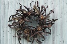 Black locust bean pod wreath, Berkshire Botanical Garden.