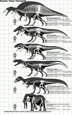 Grandes teropodos del Mesozoico