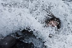 stunning underwater photography on the site before, but these delicately, darkly staged works by Tomohide Ikeya are some of the most bizarre and wonderful we have seen to date. The Japanese photographer has turned the her hobby of scuba diving into a conceptual body of work.