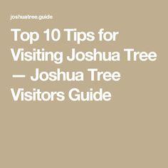 Top 10 Tips for Visiting Joshua Tree — Joshua Tree Visitors Guide