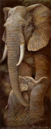An Elephant ~ With Her Young Calf.