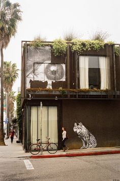 Abbott Kinney Blvd, Venice, California © Carole Sternicha