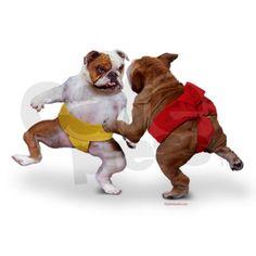 Sumo bulldogs