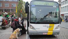 Actie voor meer toegankelijke bushaltes  Actie voor meer toegankelijke bushaltesHet Nieuwsblad'Het openbaar vervoer kan een grote meerwaarde betekenen voor personen met een handicap, maar dat is niet altijd evident', zegt Jelle Sidarow van KVG Limburg.
