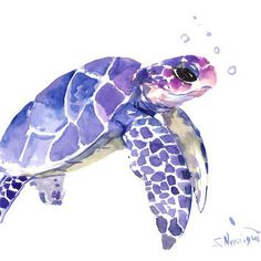 Sea Turtle painting, original watercolor painting, 12 X 9 in, blue purple sea…
