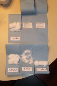 Weather Idea-- cross curricular Literacy (Little Cloud Book) and Science