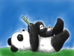 I wrote a blog mentioning the Google Panda and Penguin updates... the perfect excuse for a cute image like this!