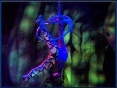 Cirque Dreams & Dinner Jungle Fantasy