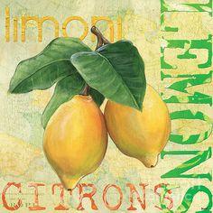 Froyo Lemon - @debdom419 on Fine Art America