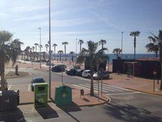 Cielo azul y palmeras en Adra (Almería) Foto: Encarna Toledano Acosta. [Envía tu foto por correo mailto: zona20@20minutos.es o por twitter #Primavera20m]