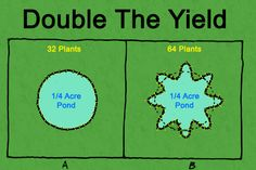 the yield .plant in star shape rather then circle for more plants per area the yield .plant in star shape rather then circle for more plants per areathe yield .plant in star shape rather then circle for more plants per area Hydroponic Gardening, Hydroponics, Organic Gardening, Aquaponics Diy, Sustainable Farming, Urban Farming, Sustainability, Permaculture Design Course, Grey Water System