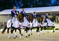 Dynamic Dutch deliver in latest Nations Cup dressage leg