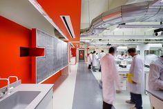 Carleton University, Steacie Labs in Ottawa. #lighting #design