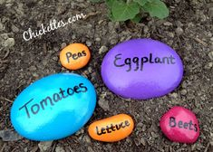 Easy homemade garden / plant markers using stones. Longer lasting, re-useable, and adds pops of color to your garden!  Sarah - you should make these!