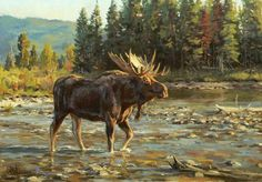 Paintings of the West including Texas. He has garnered praise for his paintings of North American wildlife and has been featured in numerous publications. Specialty in whitetail painting Wildlife Paintings, Wildlife Art, Animal Paintings, Bull Moose, Moose Art, Southwest Art, Commercial Art, Fine Art Auctions, Sports Art