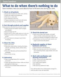 10 Things To Do At Your Veterinary Hospital When There S Nothing