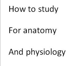 Tips on how to study for anatomy&physiology classes
