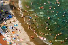 Tilt-Shifted Beach