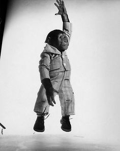 J Fred Muggs by Philippe Halsman, J. Fred Muggs is a chimpanzee that was the mascot for NBC's Today Show from 1953 to Marlon Brando, Salvador Dali, Magnum Photos, Alfred Hitchcock, Brigitte Bardot, Technique Photo, Philippe Halsman, Jumping For Joy, Iconic Photos