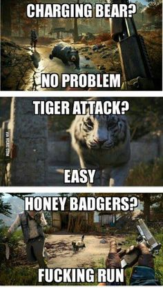 Far cry 4 logic.
