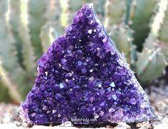 Amethyst Crystal Triangle #amethyst #crystals #loveandlight #lightworker