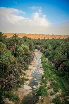 El kantra #Biskra #Algeria #Algérie