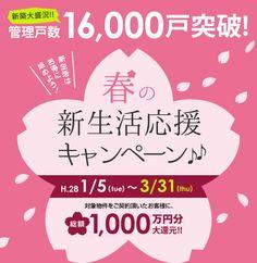 Sale Banner, Web Banner, Lookbook Design, Spring Banner, Thing 1, Spring Design, Japan Design, Sale Poster, Banner Design