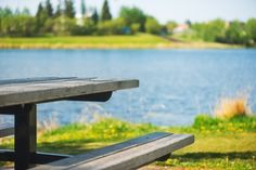 Give your old picnic table a new life by refinishing it with some sandpaper and a stain.