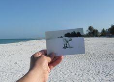 Dear Photograph, Then and Now Photos of Old Snapshots Great Photos, Old Photos, Vintage Photos, Interesting Photos, Dear Photograph, Then And Now Photos, Foto Fun, Photography Projects, Beach Photos