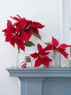 Give Santa a Warm Welcome With These Christmas Mantel Decorating Ideas 62 Christmas Mantel Decorations - Ideas for Holiday Fireplace Mantel Decorating Christmas Poinsettia, White Christmas, Christmas Holidays, Christmas Crafts, Simple Christmas, Xmas, Country Christmas Decorations, Christmas Mantels, Holiday Decorating