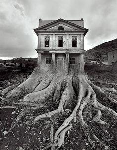 Jerry Uelsmann tree house- nature idea