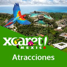 En parque Xcaret encontrarás las mejores atracciones en Cancún y Riviera Maya en México. Disfruta con tu familia actividades naturales y culturales en un parque a la orilla del mar en Xcaret, México.