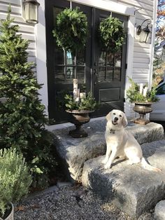 Maison Decor: French Country Christmas Courtyard