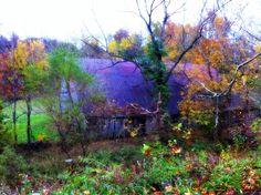 Lower Hines Creek Road barn by #lizettefitzpatrick, Richmond KY