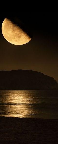 .moonlight