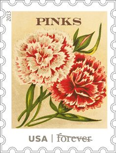 2013 First-Class Forever Stamp - Vintage Seed Packets: Pinks Envelopes, Pink Canvas Art, Vintage Seed Packets, Flower Stamp, Stamp Collecting, Mail Art, American, Vintage Advertisements, Vintage Images
