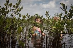 "Katie Decker (@omgitsjustkt) took this portrait of her daughter at New Smyrna Beach in #Florida. ""We kayaked into the mangroves and stopped here"" she writes. To submit your images for consideration on our feed follow @childhoodeveryday and tag your photos #childhoodeveryday. // #familydocumentary #documentary #portrait #portraits #portraitphotography #contemporaryphotography"