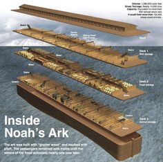 Inside Noah's Ark - I wish I could find a Bible craft idea and coloring sheet that showed the accurate dimensions of Noah's ark (more like a barge)!