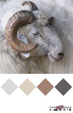 kleurenpalet tinten grijs en bruin   taupe   kleurinspiratie